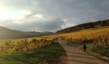 Un automne en Alsace