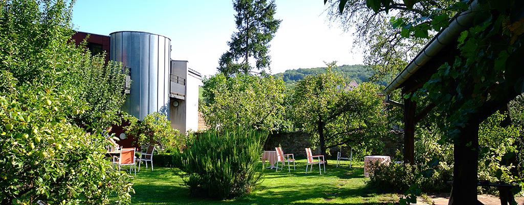 Le jardin zinck h tel for Hotel le jardin 07700